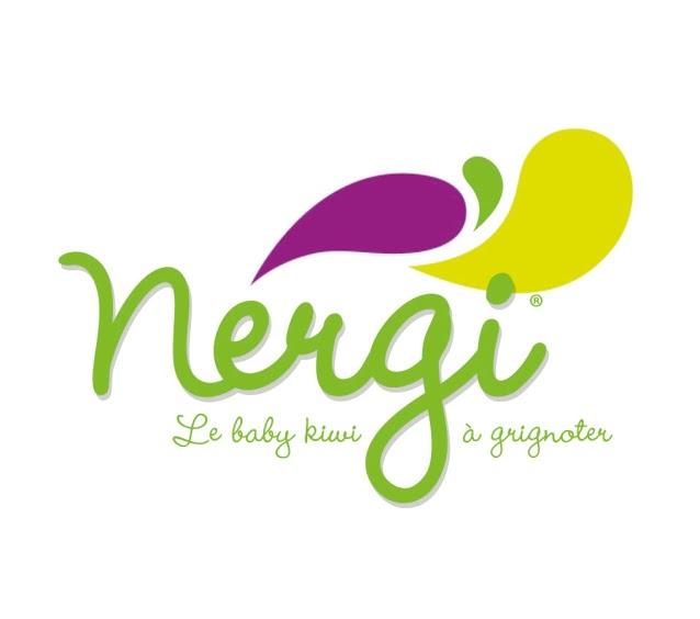 LOGO-NERGI