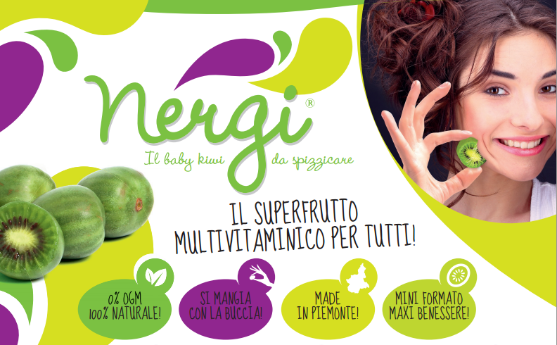 NERGI_generale_logo